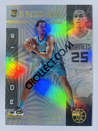 PJ Washington Jr. - Charlotte Hornets 2019-20 Panini Illusions #165 (Rookie)