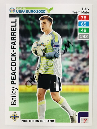 Bailey Peacock (Northern Ireland) | 2020 Road to UEFA Euro #136