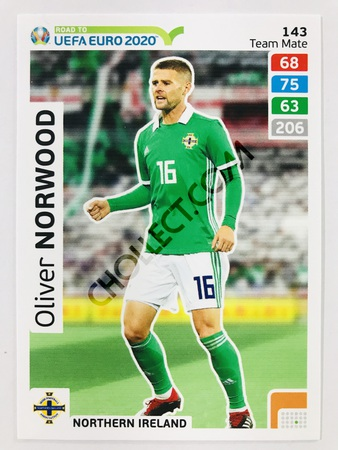 Oliver Norwood (Northern Ireland) | 2020 Road to UEFA Euro #143