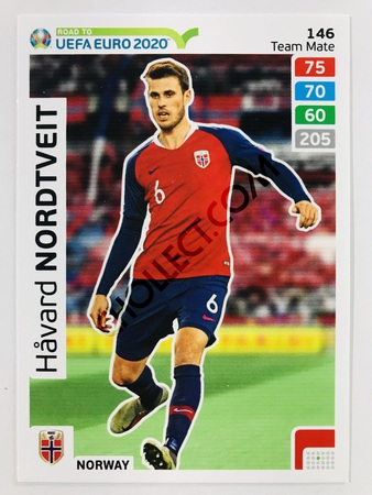 Havard Nordtveit (Norway) | 2020 Road to UEFA Euro #146