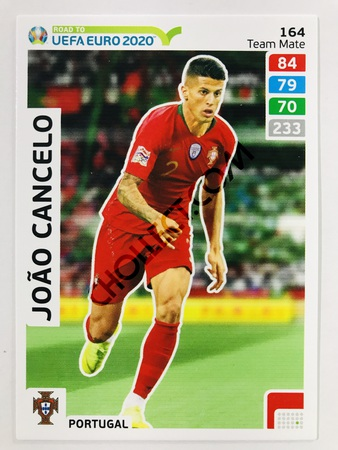 Joao Cancelo (Portugal) | 2020 Road to UEFA Euro #164