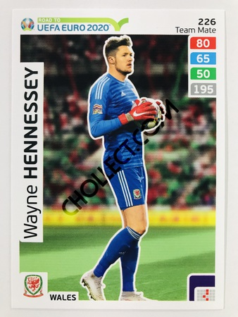 Wayne Hennessey (Wales) | 2020 Road to UEFA Euro #226